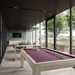 Games Lounge with Pool table