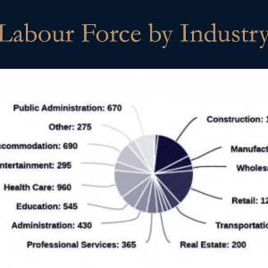 Upper Vista Muskoka Labour Force