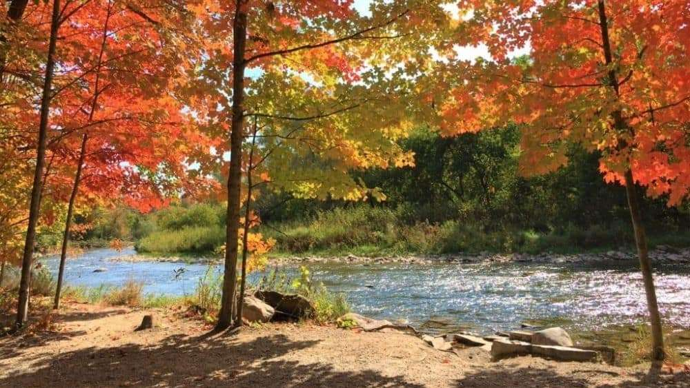 A view of Riverwood Conservancy in Fall